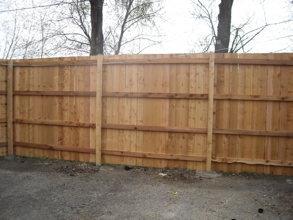 8 Privacy Fence