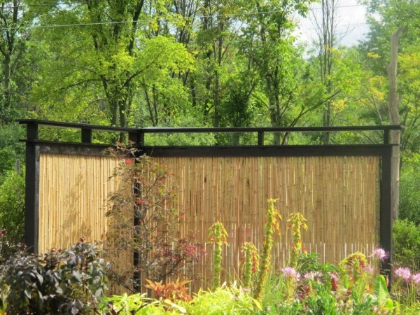Inexpensive Privacy Fence