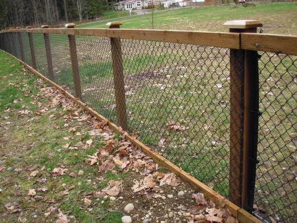 Wood And Chain Link Fence