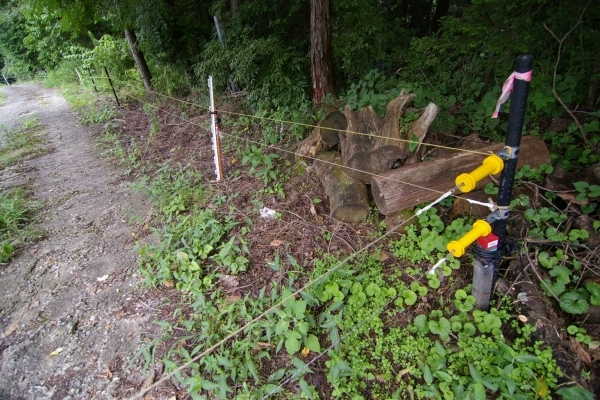 Fascinating Hot Wire Fence For Dogs Electric Fence Wikiwand