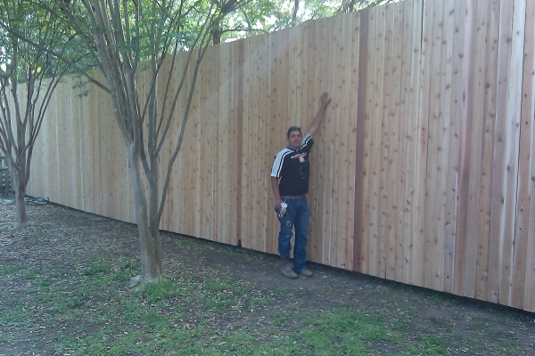 Install Wood Fence