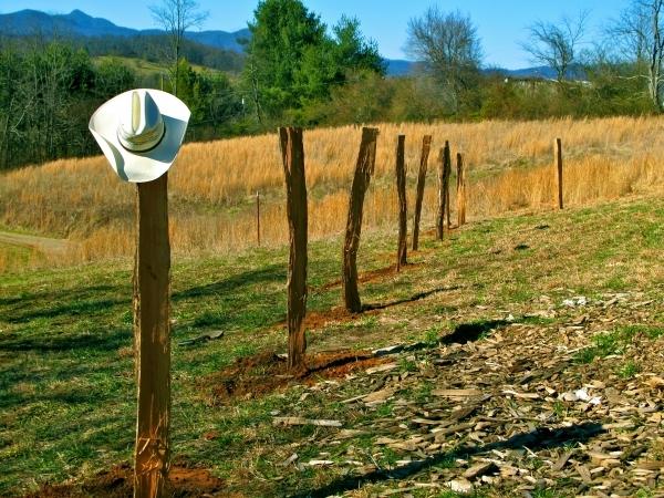Fascinating Round Wood Fence Posts Fence Options On The Farm The Free Range Life