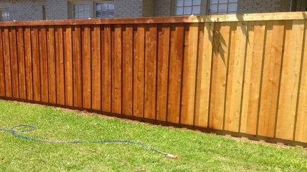 Inspiring Staining Wood Fence How We Stained Our New Cedar Wood Fence Youtube