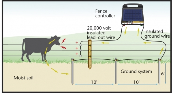 Marvelous Hot Wire Fence For Dogs Ground Rod Installation Grounding Rod Install Zareba