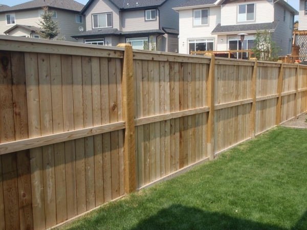 Privacy Fencing Ideas