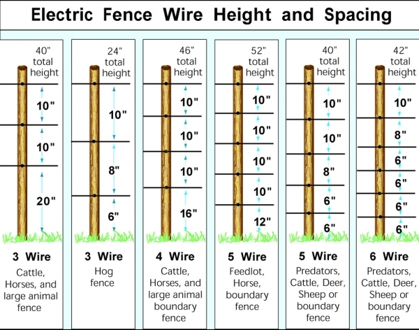 Picture of Hot Wire Fence For Dogs Electric Fencing For Goats Electric Fence For Sheep Zareba