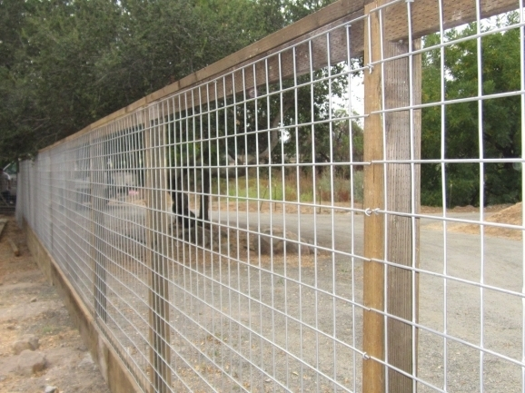 Wire Panel Fence