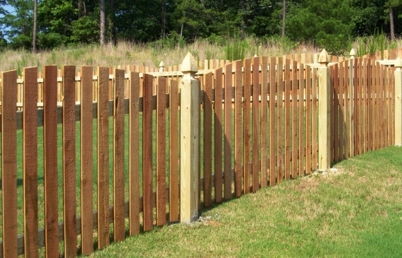 Cedar Picket Fence Panels