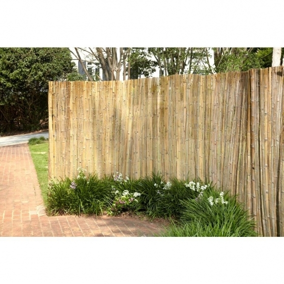 Home Depot Reed Fencing