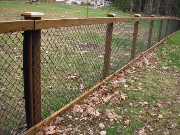 Chain Link Fence Ideas