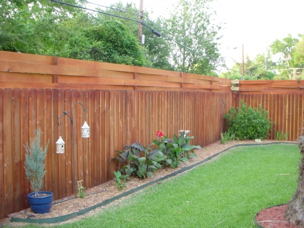 Awesome Best Privacy Fence Spiceblogger A Blog On Learning To Cook Loving To Eat And