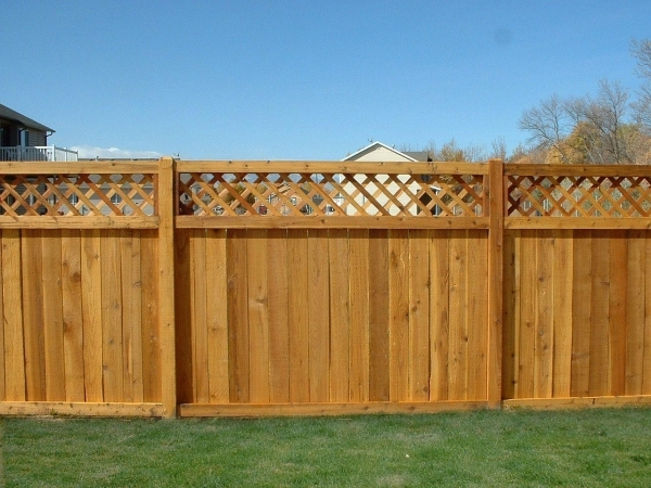 Picture of Best Privacy Fence Wooden Privacy Fence Panels Best Wooden Fence Ideas Come Home