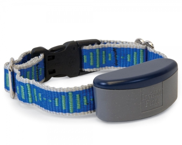 Picture of Invisible Fence Collars Dog Invisible Fence Pennsylvania Dog Collar Beds Supplies Chester