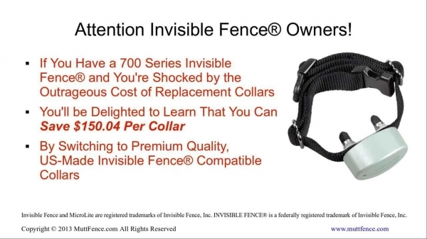 Remarkable Invisible Fence Collars Invisible Fence Collar Save 50 On Compatible Replacement