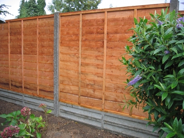 Cheap Wood Fence
