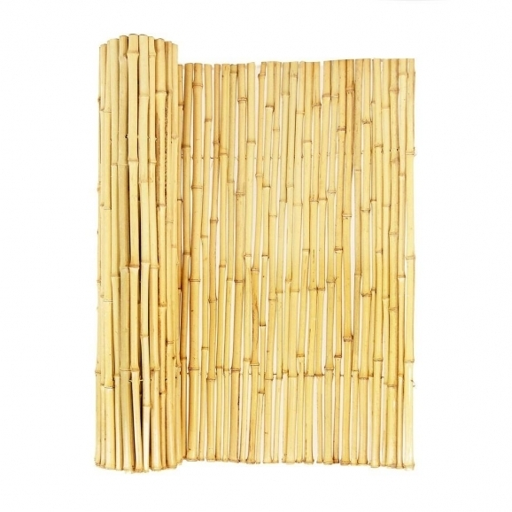 Bamboo Fencing Home Depot