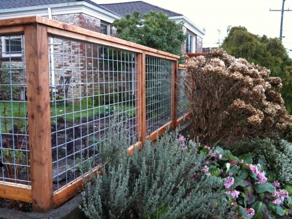 Tractor Supply Dog Fences