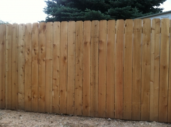 6 Privacy Fence