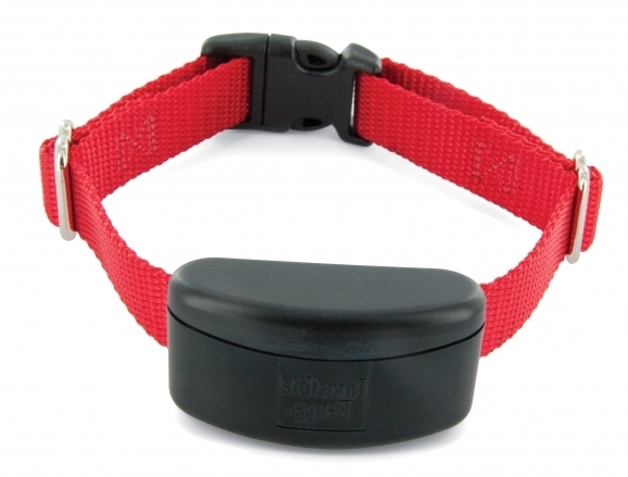 Electric Fence Dog Collar