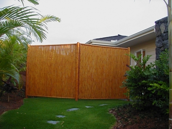 Portable Privacy Fence