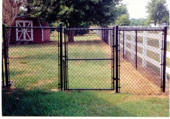5 Chain Link Fence
