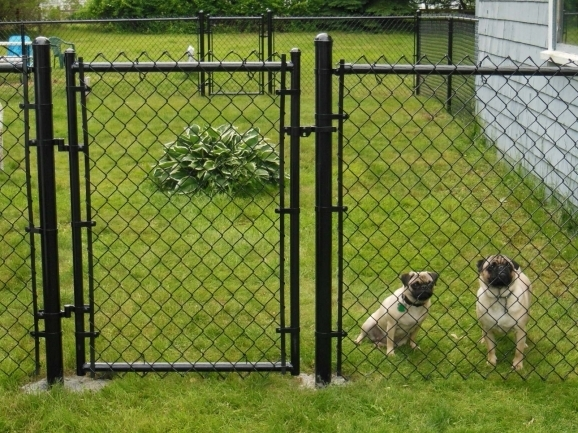 Building A Chain Link Fence